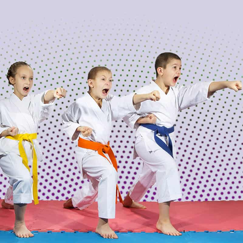 Martial Arts Lessons for Kids in North Richland Hills TX - Punching Focus Kids Sync